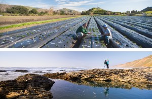 Examples of wide photos consistent with the Cal Poly brand